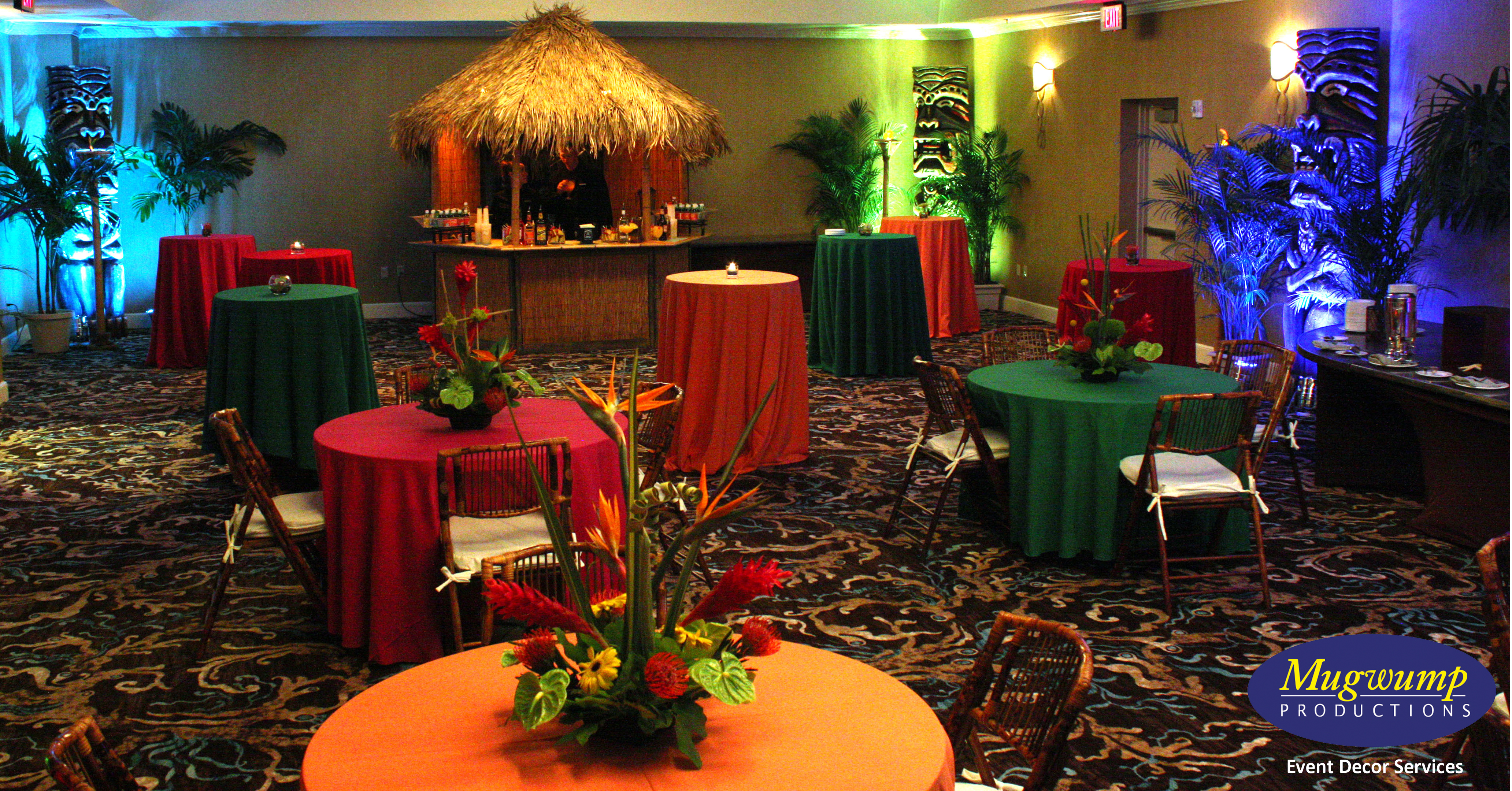 eventful disclosure tropical paradise jacksonville florida. Black Bedroom Furniture Sets. Home Design Ideas